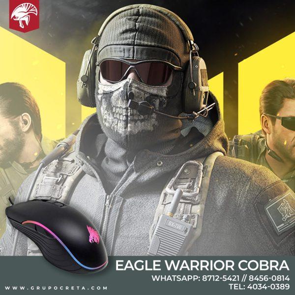eagle warrior cobra