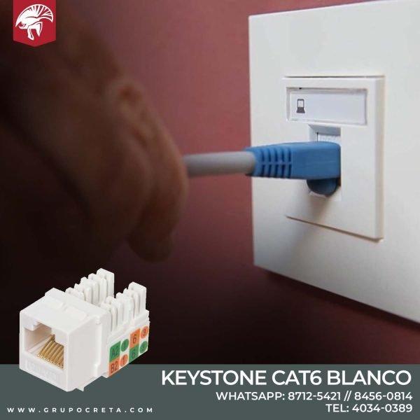 Conector Keystone blanco